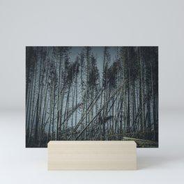 Fallen Trees After Storm Victoria February 2020 Möhne Forest dark Mini Art Print