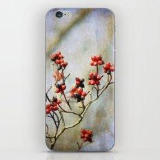 Winter Berries iPhone & iPod Skin