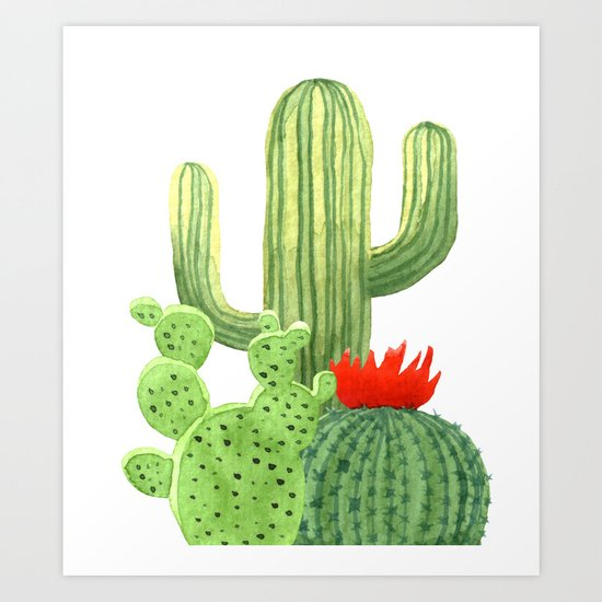 Perfect Cactus Bunch by naturemagick