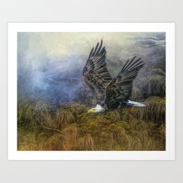 Bald Eagle Country Art Print