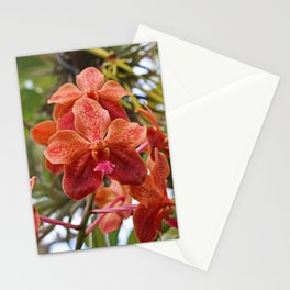 Nature in Naples Stationery Cards