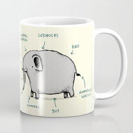 Anatomy of an Elephant Coffee Mug