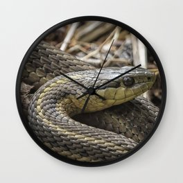 Garter Snake Portrait Wall Clock