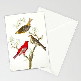 Pine Grosbeak Bird Stationery Cards