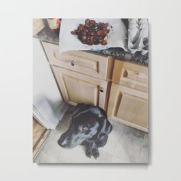 Sunday in the kitchen with Kai Metal Print