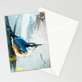 Nuthatch Bird Stationery Cards