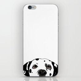 Dalmatian #1 iPhone Skin