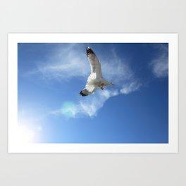 Birds in the sun against the sky Art Print