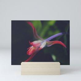 """Sandia Dragon"" Mini Art Print"