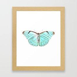 Butterfly Flutter By Framed Art Print