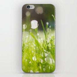 grassy morning iPhone Skin