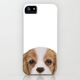 Cavalier King Charles Spaniel Dog illustration original painting print iPhone Case