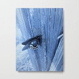 Monarch Flutterby Metal Print