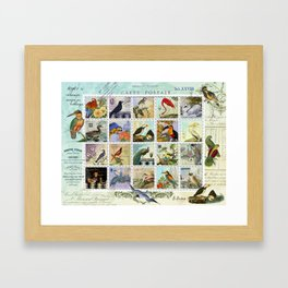 Birds of a Feather Postal Collage Framed Art Print
