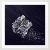 jellyfish Art Prints featuring Jellyfish by Adam Dunt