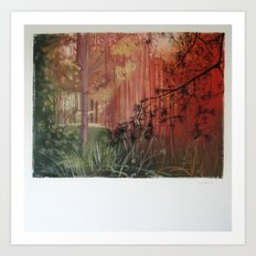 The Light is changing colour.... Art Print