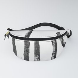 Blackened and Scorched Fanny Pack