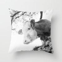 cow Throw Pillows featuring COW by Julia Aufschnaiter
