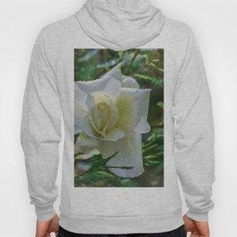 White rose Hoody