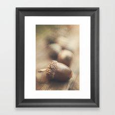 The littlest acorn Framed Art Print