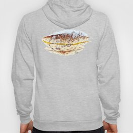 Sleuthing for Fossils Hoody