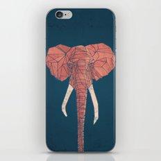 Delirium iPhone & iPod Skin