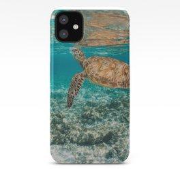 Turtle ii iPhone Case