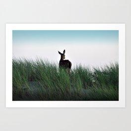 Deer Stop Art Print