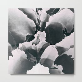 Blooming in black and white Metal Print