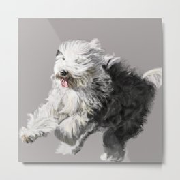 Old English Sheepdog On the Move Metal Print