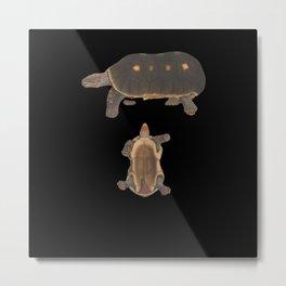 Reptile biodiversity (Tortoise) Metal Print