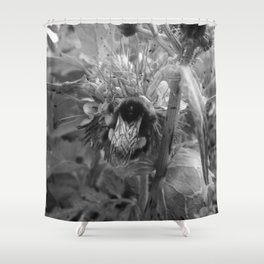 Bee Friends #2 (Black and White) Shower Curtain