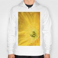 sunshine Hoodies featuring Sunshine by Kathy Dewar