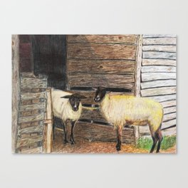 Curly and Moe Canvas Print