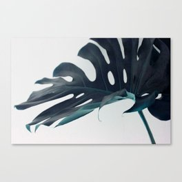 Botanical Vibes VI Canvas Print