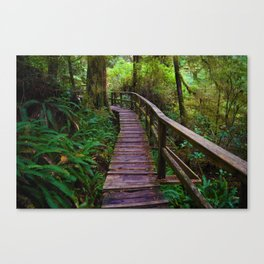 Walks through the Rainforest on Vancouver Island, Canada Canvas Print