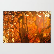 Fire  Fantasy Canvas Print