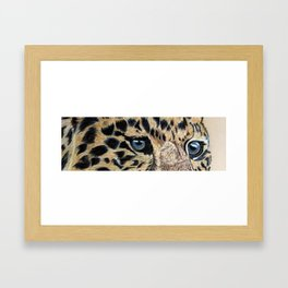 Leopard's eyes Framed Art Print