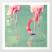 flamingos Art Prints featuring Flamingos  by Laura Ruth