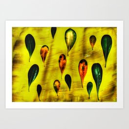 Autumn Shine Art Print
