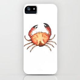 Crab: Fish of Portugal iPhone Case