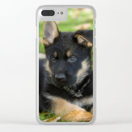 8 weeks old shepherd puppy Clear iPhone Case