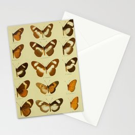 Vintage Butterfly Print - African Mimetic Butterflies (1910) - Common Bematistes Butterfly & Mimics Stationery Cards