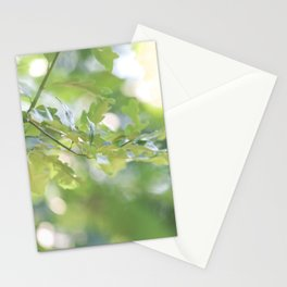 Oak in Summer - Nature Photography Stationery Cards