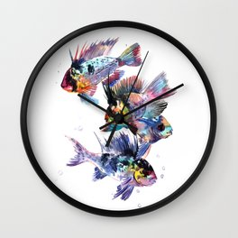 Cichlid Ram Aquarium Sih art Wall Clock