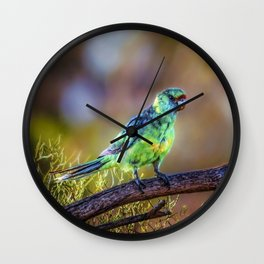 Mallee Ringneck Parrot Wall Clock