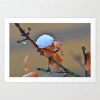 copper Art Prints featuring Copper by Best Light Images