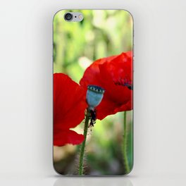 poppies in the summer iPhone Skin