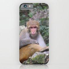 INDIA - Monkey on a Hike iPhone 6s Slim Case