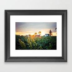 Rustic Midwest Farm  Framed Art Print